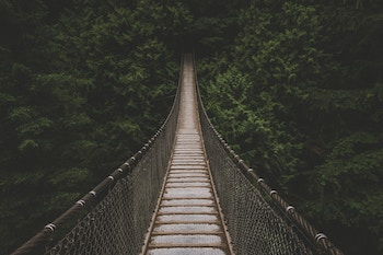 Rope bridge as an analogy for stable housing