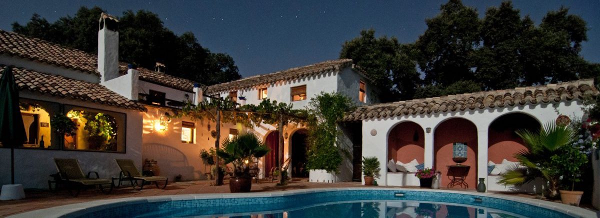 Mansion with swimming pool and lights and plants
